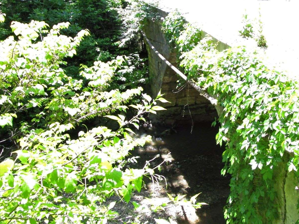 Cave Spring Branch Turkey Creek Bridge